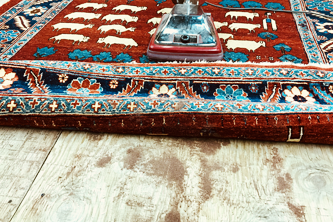 methods of professional rug cleaning