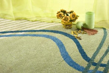 New York carpet cleaning service